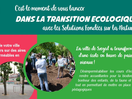 It is time to take part to the green transition with Nature Based Solutions!