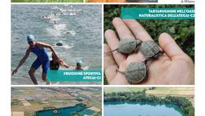 CITTÀ METROPOLITANA DI MILANO: 4 cave rinaturalizzate esempio di buona pratica a livello europeo
