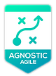 Link to the agnostic agile manifesto