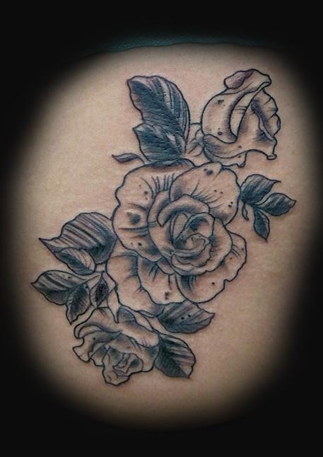 illistration roses