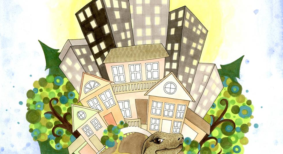 TurtleBurgh