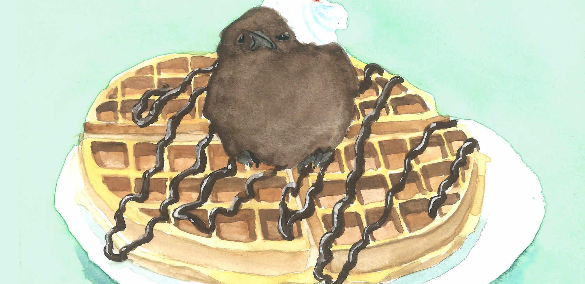 Waffle with Chocolate Ice Cream Bird
