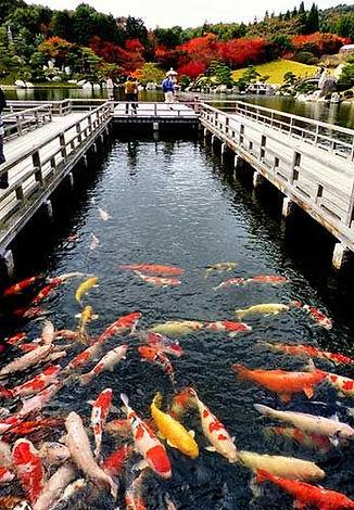 Sankeien Garden Hiroshima.jpg