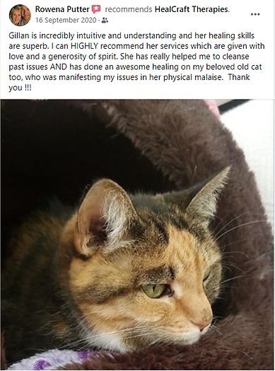Rowena and Marble Putter - 16 September 2020 - Animal Energy Healing FB + pic.png