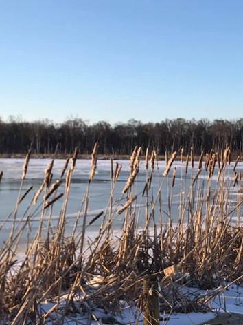 Winter wandeling
