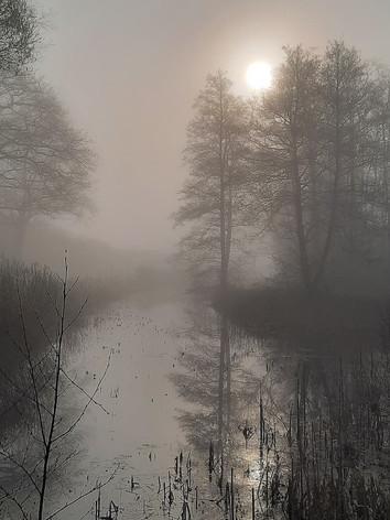 Mistige ochtend wandeling