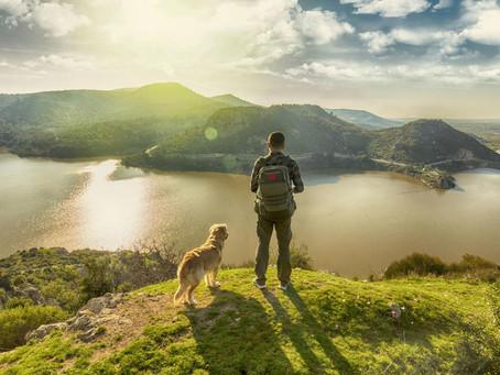 Mental Health & The Environment
