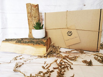 eco friendly subscription box background