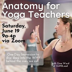 IG Anatomy for Yoga Teachers.png