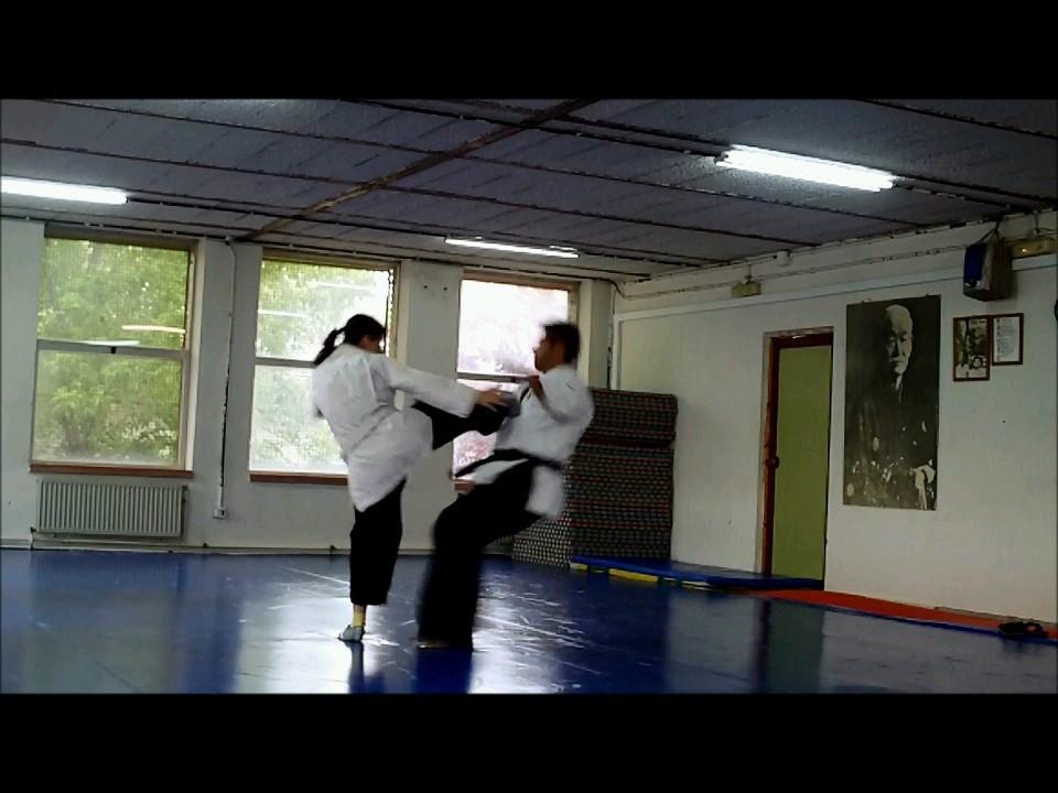 a_Defensa+personal+Yawara+Jitsu+5+007_0002