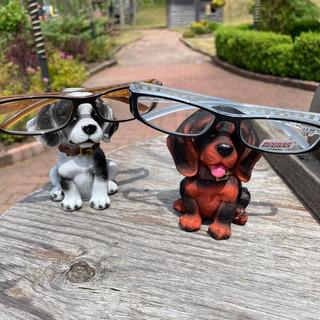 Dogs & Glasses.jpg