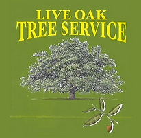 live oak logo.png