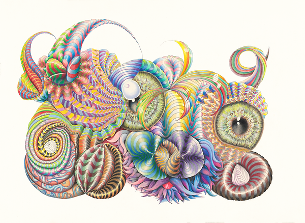 Coral creature- bonny.png