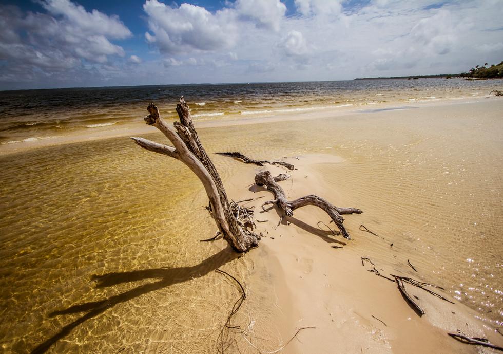 Praias do rio Arapiuns.