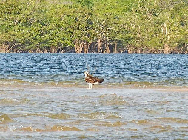 foto: http://www.aos4ventos.com.br/