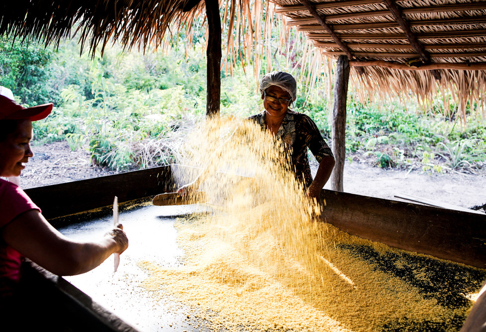 veja o processo de como faz farinha. Foto de Davi Boarato
