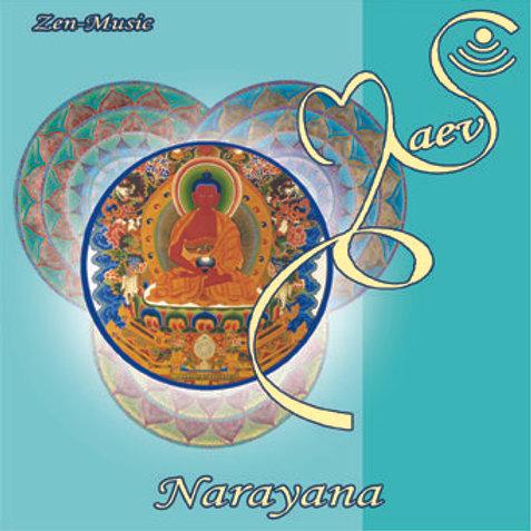 Série Mandala- Narayana