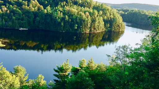 View on the Mud Bay, Mac Gregor lake