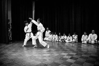Karate_festiva-day-2-112-1000pxW.jpg