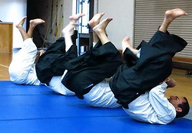 Aikido koho-vjccIMG_7995.jpg
