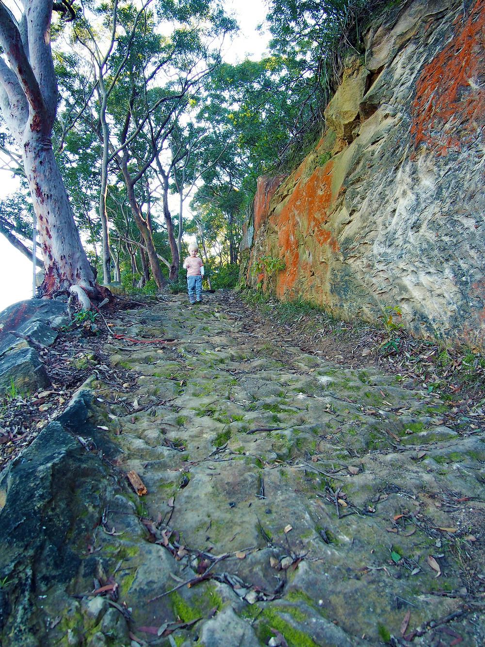 Convict Built Illawarra Road