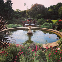 Vaucluse House: A divine historic house, picnic spot and luscious rolly polly hills.