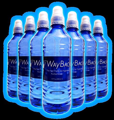 WayBack Water - 12 bottles (makes 396 gallons)