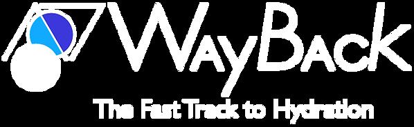 waybackweblogo01.png