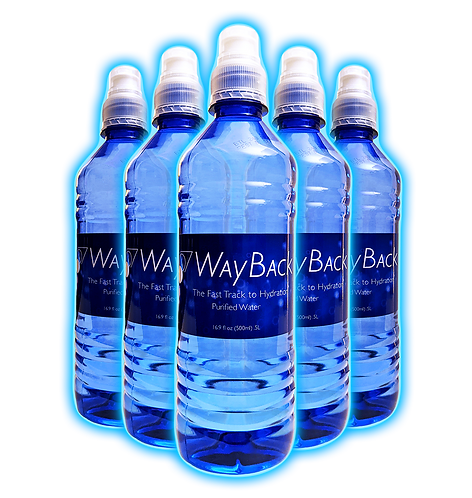 WayBack Water - 8 bottles (makes 264 gallons - $1.21/gallon)