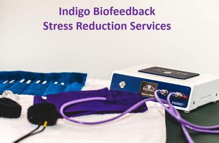 Indigo Biofeedback Scan