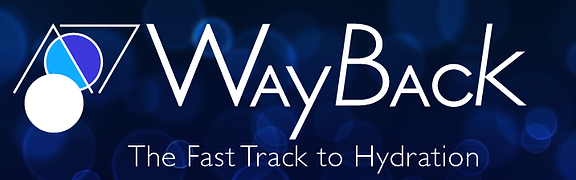 wayback-water-logo.png