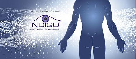 INDIGO-header.jpg