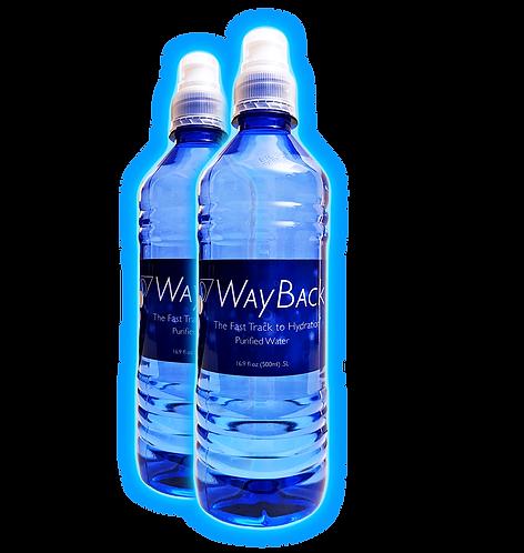 WayBack Water - 2 bottles (makes 66 gallons - $1.21/gallon)