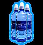 WaybackWater-3bottles.png