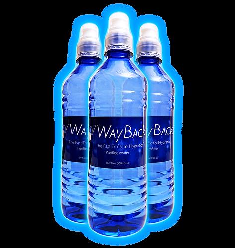 WayBack Water - 4 bottles (makes 132 gallons - $1.21/gallon)