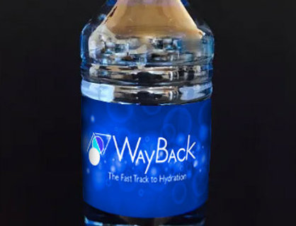 WayBack Water - 12 bottles (makes 396 gallons)