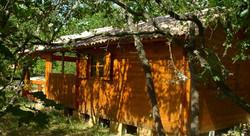 chalet, bungalow