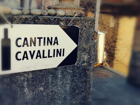 Le telecamere di VT ospiti della Cantina Cavallini a Cabbio.