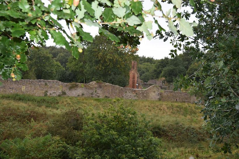 Walk 9a Hartshill Castle.JPG