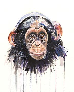 16x20 Chimp.jpg