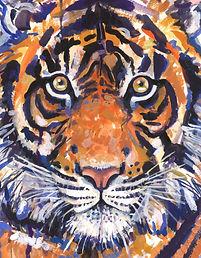 16x20 tiger.jpg