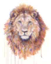 16x20 Lion.jpg