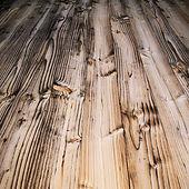 τερμίτες, τερμίτης, σαράκι, σράκια, ψαράκι, ψαράκια, ξύλο, ξύλινο, απεντόμωση, δολωματικοί σταθμοί, παγίδες, gel, απολύμανση,