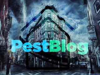 Τα αστικά έντομα επιβιώνουν καλύτερα στις ακραίες καιρικές συνθήκες.