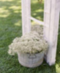 Galvanized bucket with flowers | Unforgettable Events