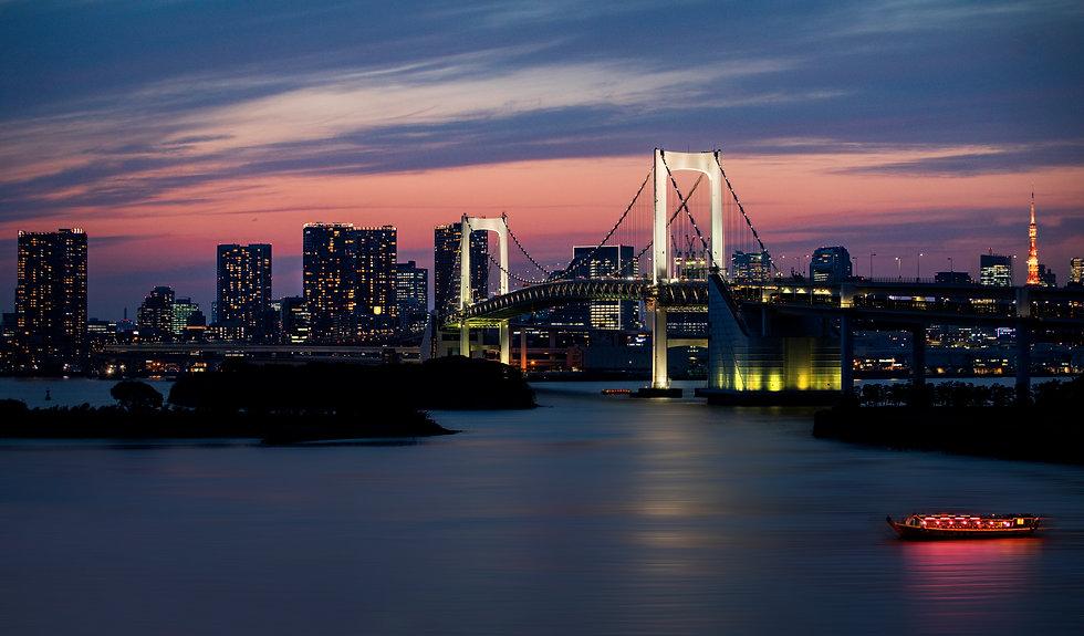 Copia di tokyo panorama 2.jpg