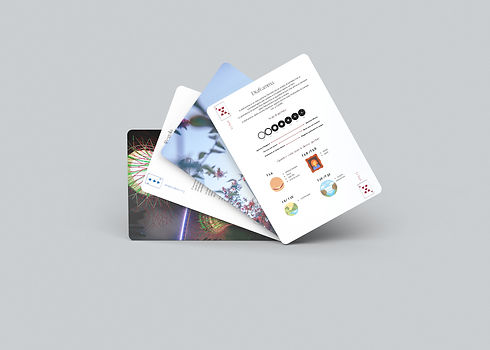 08 Playing Cards Mock-Up.jpg