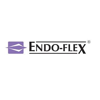 Endo Flex logo