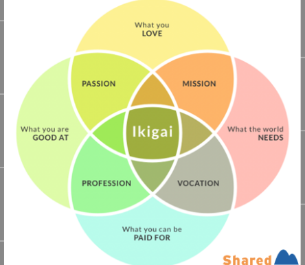 Case Study - Ikigai: The Japanese Secret to a Long and Happy Life
