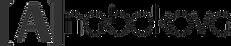 лого Набокова стайл.png